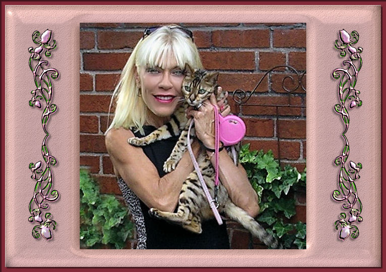 Bengal Cat Lucy and Susan Law