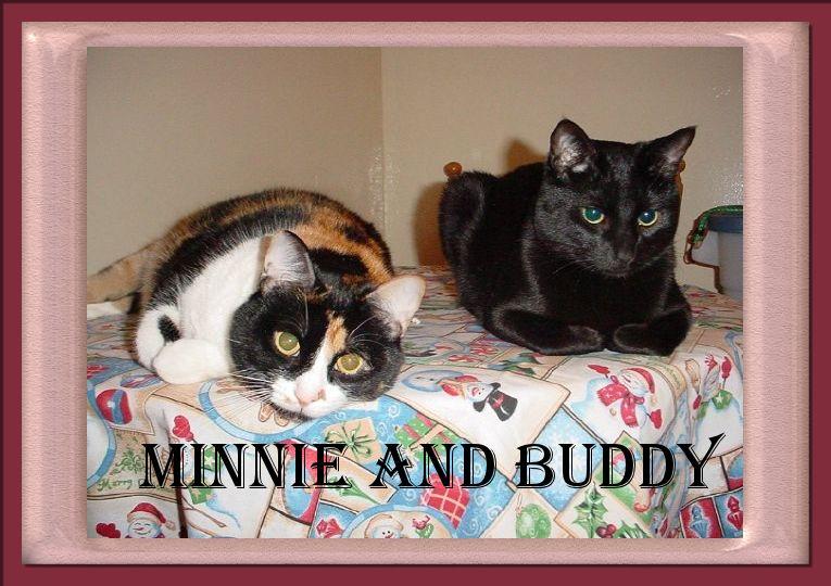 Minnie and Buddy