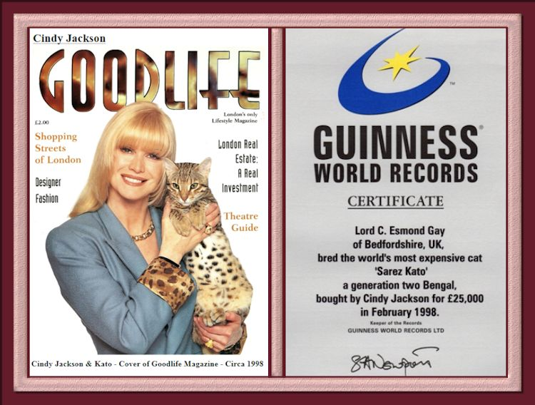 Guinness World Records Certificate Most Expensive Bengal Cat Cato and Cindy Jackson